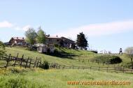 03 - Agricampeggio Collina delle Stelle - agriturismo.jpg