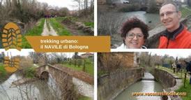 trekking urbano navile bologna 274s