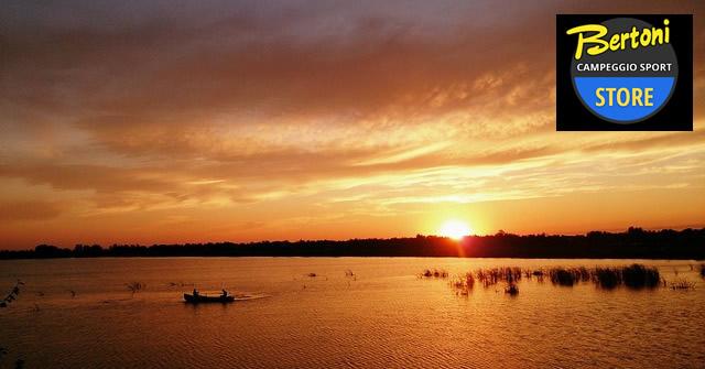 news canoe bertoni 1